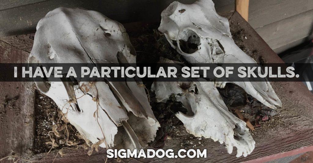 A particular set of skulls