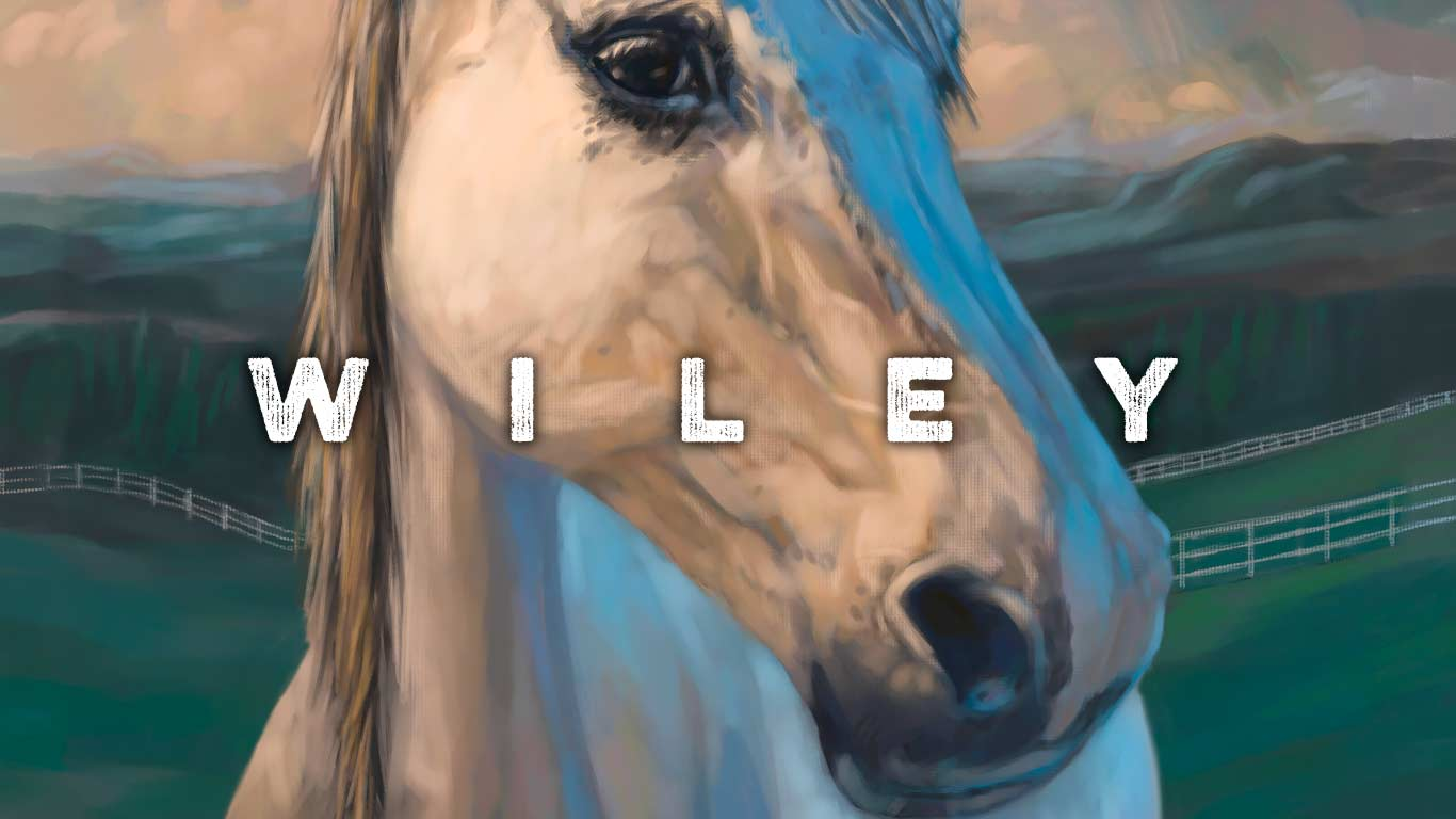 Wiley horse portrait