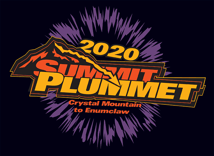 summit plummet logo