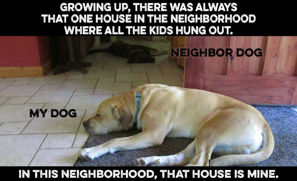 neighbor dog