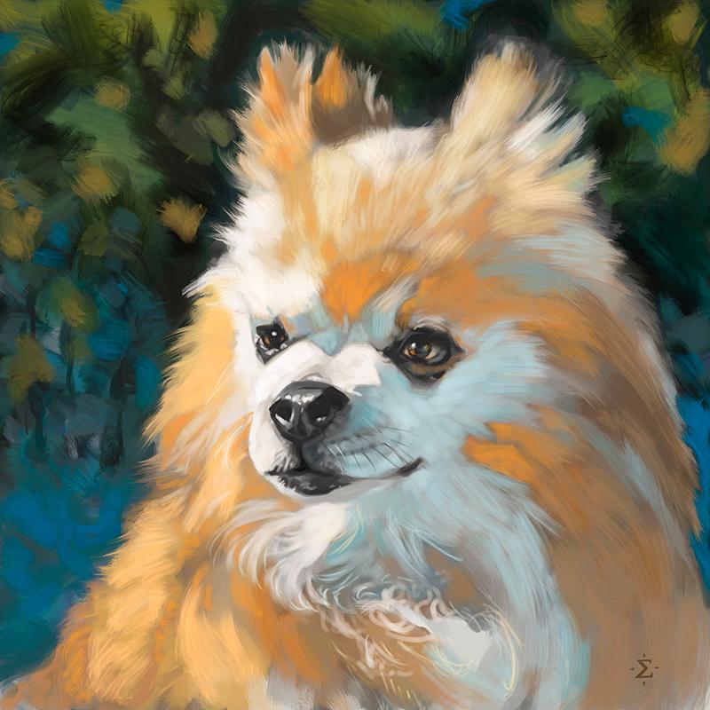 Grizz pet portrait
