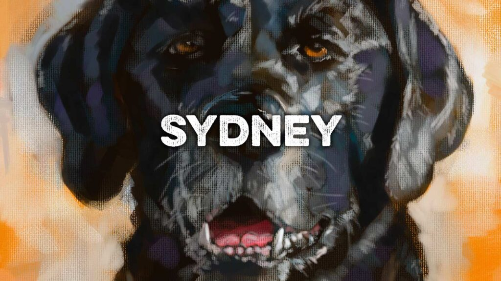 pet portrait commission sydney feature