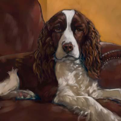 Gracie dog portrait