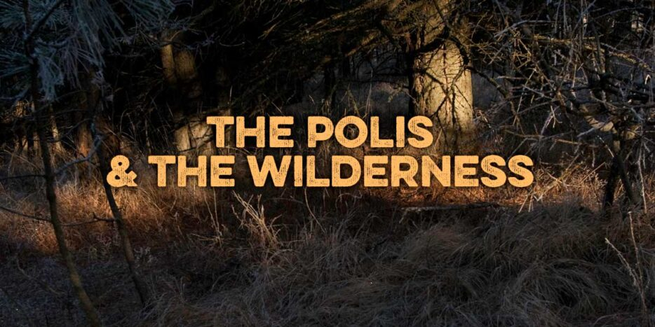 The Polis and the Wilderness