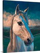 Wiley horse portrait
