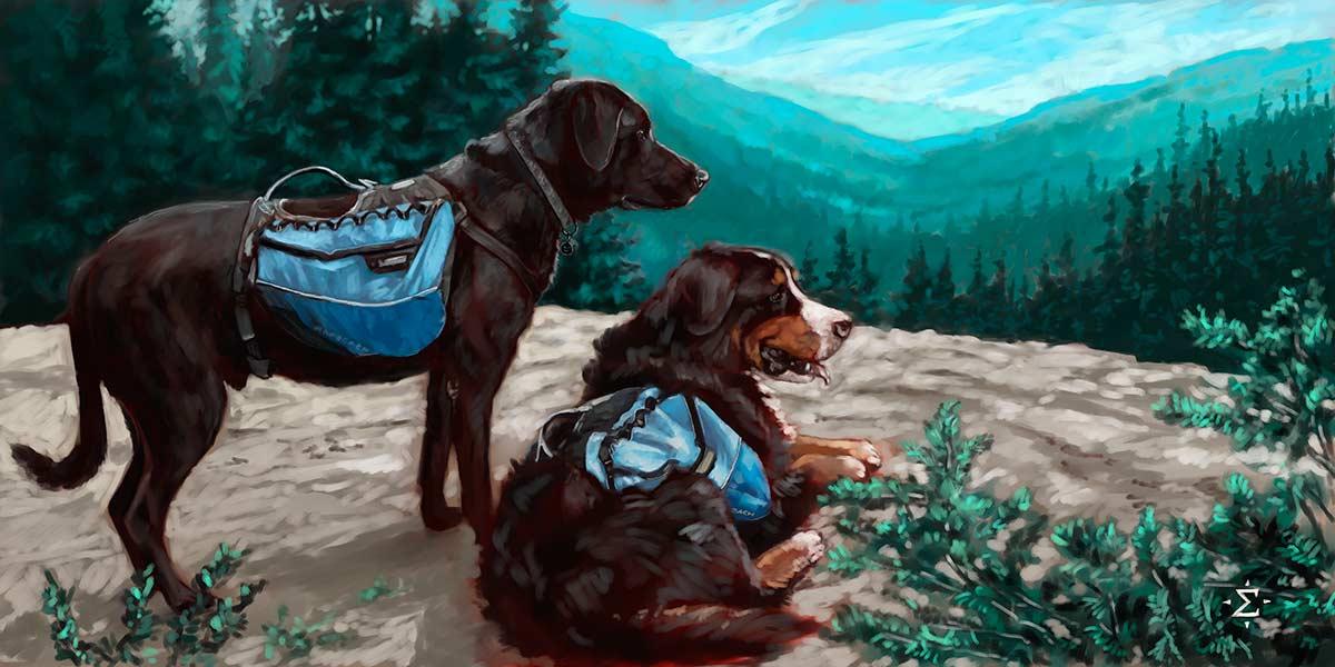 Hiking dogs portrait