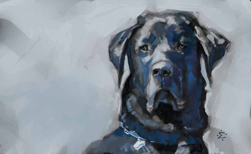 Boris painting