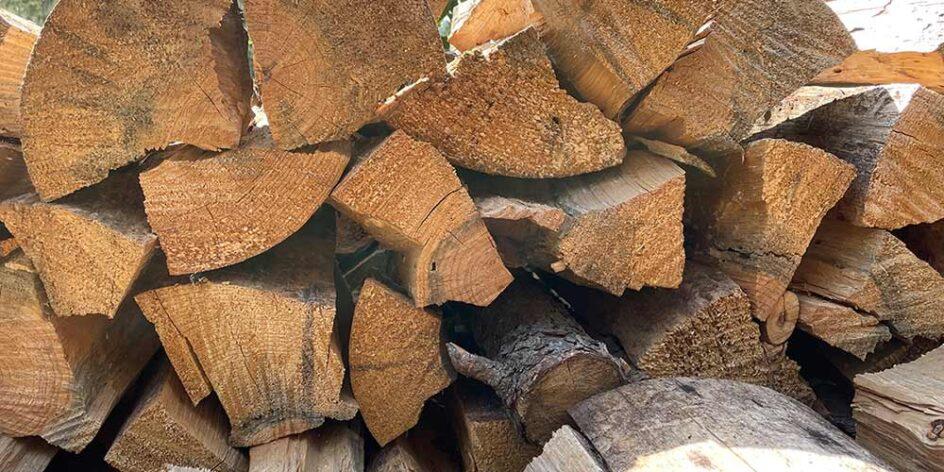a wood pile
